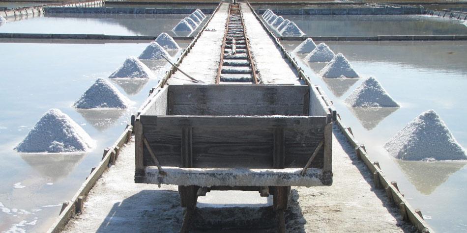 Tu so tudi soline, kjer so že pred več sto leti domačini pridobivali iz morja sol in solinsko zdravilno blato